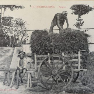 CPA - cochinchine, Collection Poujade de Ladevèze, Marchand d'herbe, Saigon