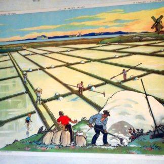 Affiche Rossignol, Le marais salant/La cote basse a plage et lagune