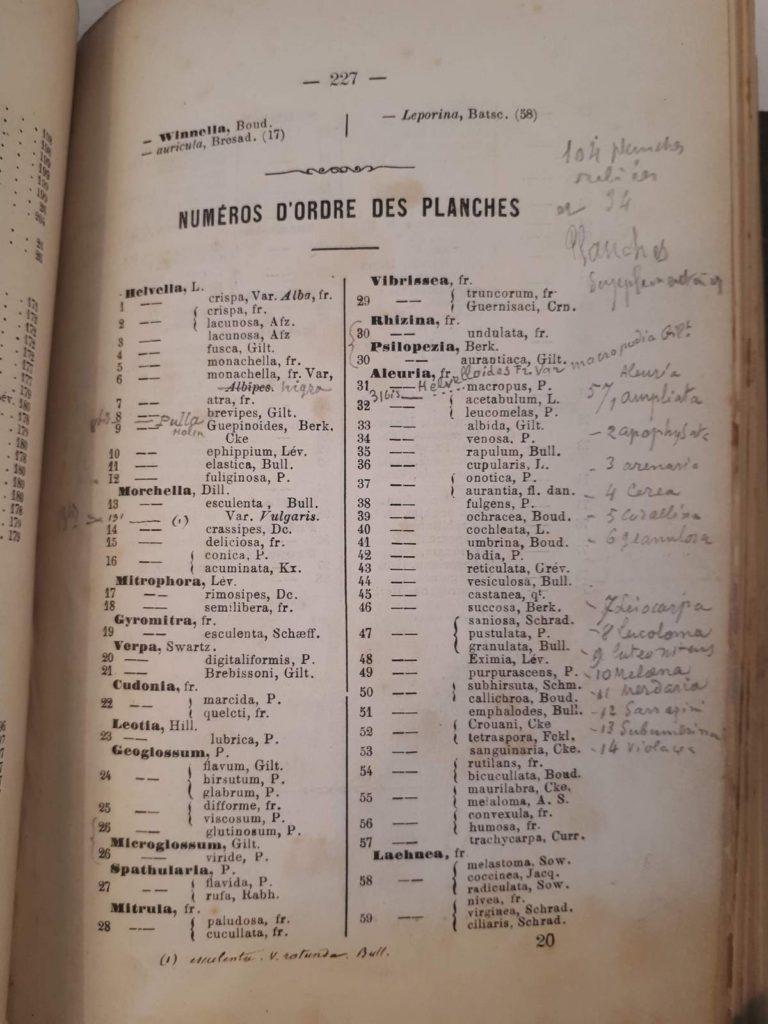 Les discomycètes Casimir Claude Gillet